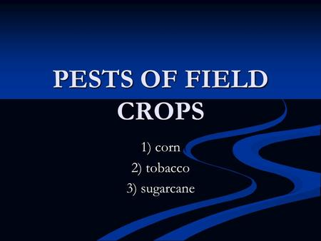 PESTS OF FIELD CROPS 1) corn 2) tobacco 3) sugarcane.