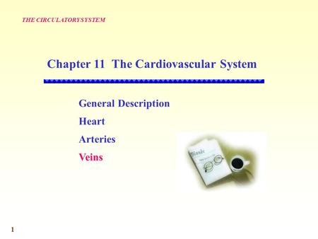 1 General Description Heart Arteries Veins THE CIRCULATORY SYSTEM Chapter 11 The Cardiovascular System.
