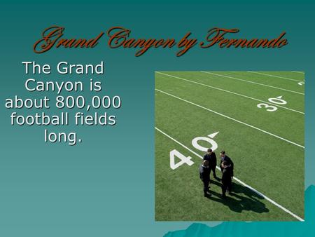 Grand Canyon by Fernando The Grand Canyon is about 800,000 football fields long.
