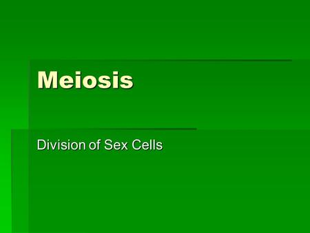 Meiosis Division of Sex Cells. Meiosis  A process of reduction division in which the number of chromosomes per cell is cut in half through the separation.