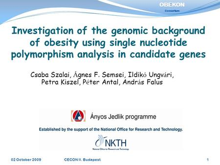 Investigation of the genomic background of obesity using single nucleotide polymorphism analysis in candidate genes 02 October 20091CECON II. Budapest.