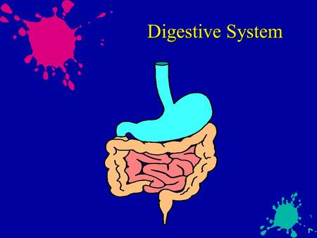 1 Digestive System. 2 Digestive Outline  Function of Digestive System  Parts of the digestive system  Digestive Process  Diseases and complications.