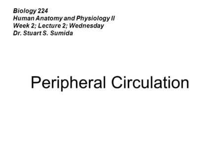 Biology 224 Human Anatomy and Physiology II Week 2; Lecture 2; Wednesday Dr. Stuart S. Sumida Peripheral Circulation.