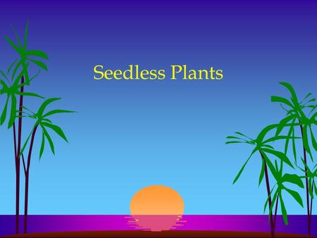 Seedless Plants.