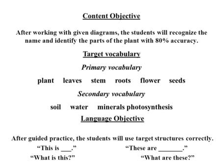 plant leaves stem roots flower seeds Secondary vocabulary