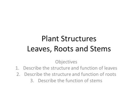 Plant Structures Leaves, Roots and Stems Objectives 1.Describe the structure and function of leaves 2.Describe the structure and function of roots 3.Describe.