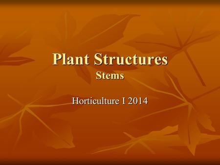 Plant Structures Stems Horticulture I 2014. Specialized Tissues in Plants Plants are as successful if not more successful than animals Plants are as successful.