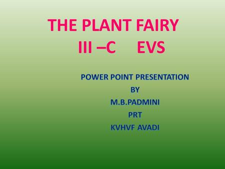 THE PLANT FAIRY III –C EVS. MAIN OBJECTIVES AND THE EXPECTED LEARNING OUTCOMES.  Observation  To observe keenly the plants in the surrounding.  To.