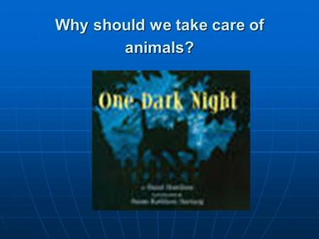 Why should we take care of animals?. Small Group Timer Timer.