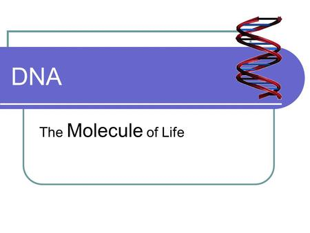 DNA The Molecule of Life. What is DNA? DeoxyriboNucleic Acid Chargaff's Law A=T, G=C R. Franklin and M. Wilkins Crystal X-ray J Watson and F Crick Model.