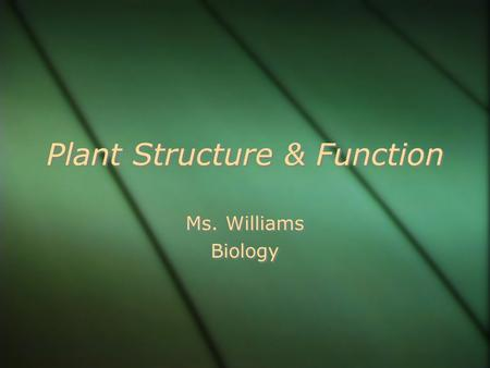 Plant Structure & Function Ms. Williams Biology Ms. Williams Biology.