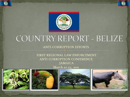 ANTI-CORRUPTION EFFORTS FIRST REGIONAL LAW ENFORCEMENT ANTI CORRUPTION CONFERENCE JAMAICA March 22-23, 2011.