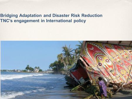 Bridging Adaptation and Disaster Risk Reduction TNC's engagement in International policy IUCN – Marco Calvo.