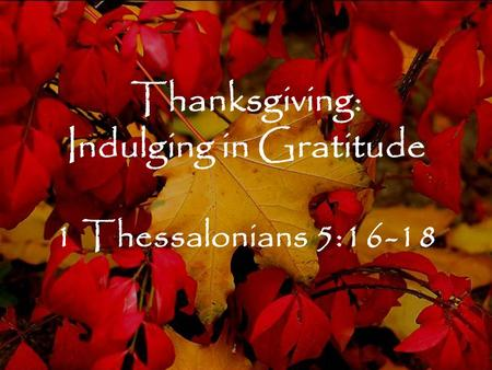 Thanksgiving: Indulging in Gratitude 1 Thessalonians 5:16-18