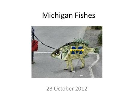 Michigan Fishes 23 October 2012. Michigan Fishes Michigan dominates Great Lakes watershed Shoreline = 3,288 miles (2 nd to Alaska) Over 35,000 inland.
