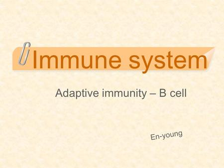 Immune system Adaptive immunity – B cell En-young.