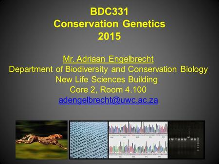 BDC331 Conservation Genetics 2015 Mr. Adriaan Engelbrecht Department of Biodiversity and Conservation Biology New Life Sciences Building Core 2, Room 4.100.