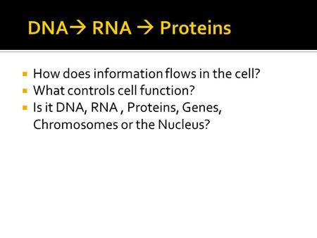  How does information flows in the cell?  What controls cell function?  Is it DNA, RNA, Proteins, Genes, Chromosomes or the Nucleus?