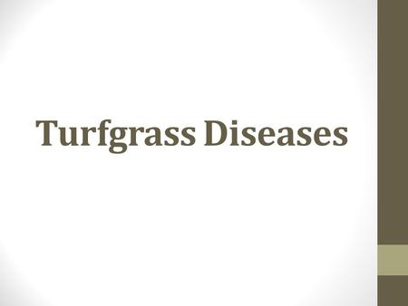 Turfgrass Diseases. Turfgrass Disease Disease: normal development disturbed; reduces value.