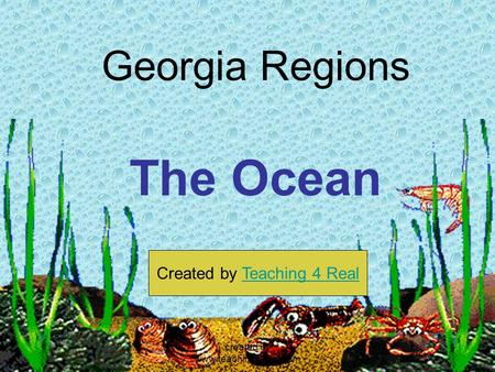 Georgia Regions The Ocean Created by Teaching 4 RealTeaching 4 Real created by www.teachingr4real.com.
