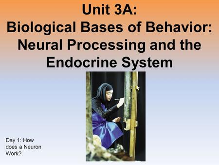 Unit 3A: Biological Bases of Behavior: Neural Processing and the Endocrine System Day 1: How does a Neuron Work?