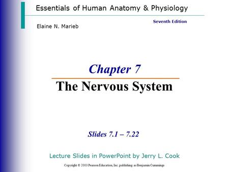 Essentials of Human Anatomy & Physiology Copyright © 2003 Pearson Education, Inc. publishing as Benjamin Cummings Slides 7.1 – 7.22 Seventh Edition Elaine.