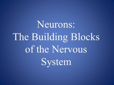 Neurons: The Building Blocks of the Nervous System.