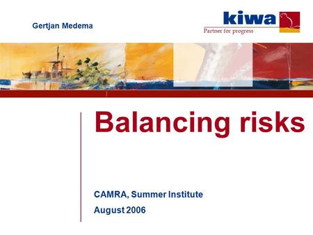 Partner for progress Balancing risks CAMRA, Summer Institute August 2006 Gertjan Medema.