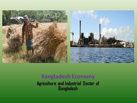Bangladesh Economy Agriculture and Industrial Sector of Bangladesh.