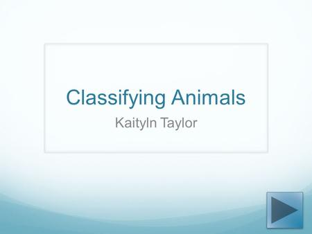 Classifying Animals Kaityln Taylor. Content Area: Science Grade Level: 2 nd Summary: The purpose of this PowerPoint is to provide students with facts.