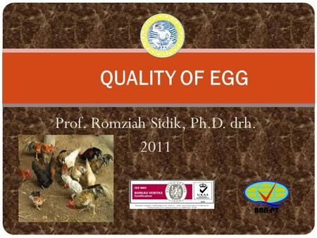 Prof. Romziah Sidik, Ph.D. drh. 2011 QUALITY OF EGG.
