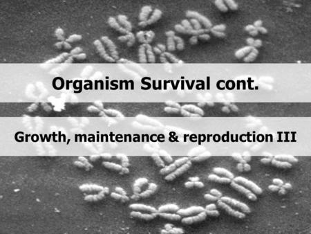 Organism Survival cont. Growth, maintenance & reproduction III.