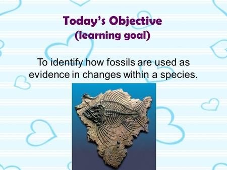 Today's Objective (learning goal) To identify how fossils are used as evidence in changes within a species.