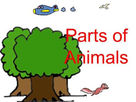 Parts of Animals. Where Do Animals Live? Where do animals live? Some animals live in a pond. Some live in the ocean. Some live in the forest. Some live.