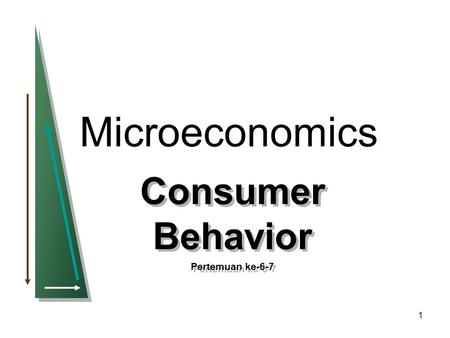 1 Microeconomics Consumer Behavior Pertemuan ke-6-7 Consumer Behavior Pertemuan ke-6-7.