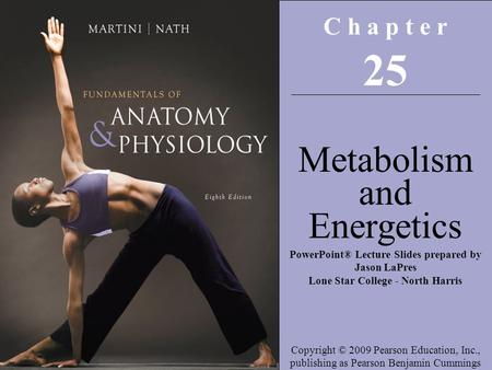 25 Metabolism and Energetics C h a p t e r