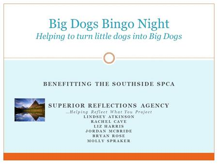 BENEFITTING THE SOUTHSIDE SPCA SUPERIOR REFLECTIONS AGENCY …Helping Reflect What You Project LINDSEY ATKINSON RACHEL CAVE LIZ HARRIS JORDAN MCBRIDE BRYAN.