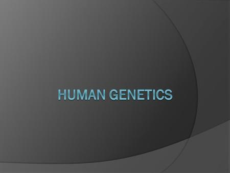  Studying humans requires alternative methods.  Human geneticists use.  Human are 4.3.12 – Deduce the genotypes and phenotypes of individuals in.