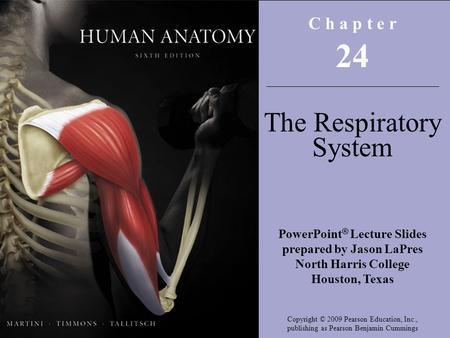 C h a p t e r 24 The Respiratory System PowerPoint ® Lecture Slides prepared by Jason LaPres North Harris College Houston, Texas Copyright © 2009 Pearson.