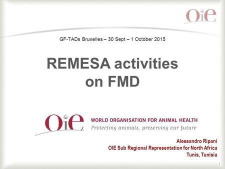 1 Alessandro Ripani OIE Sub Regional Representation for North Africa Tunis, Tunisia GF-TADs Bruxelles – 30 Sept – 1 October 2015 REMESA activities on FMD.