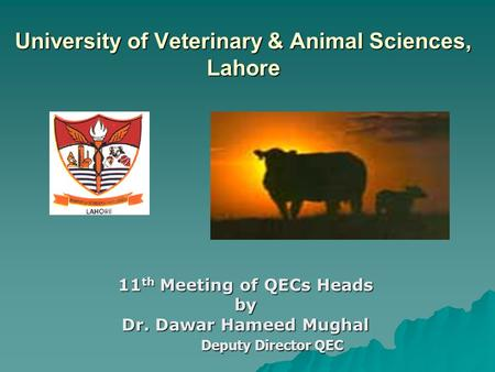 University of Veterinary & Animal Sciences, Lahore 11 th Meeting of QECs Heads by Dr. Dawar Hameed Mughal Deputy Director QEC Deputy Director QEC.