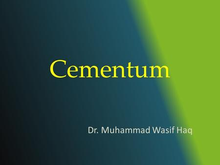 "Cementum Dr. Muhammad Wasif Haq. What is Cementum? Cementum is defined as ""Calcified, avascular mesenchymal tissue that forms the outer covering of the."