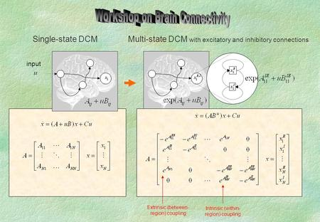 Input Single-state DCM Intrinsic (within- region) coupling Extrinsic (between- region) coupling Multi-state DCM with excitatory and inhibitory connections.