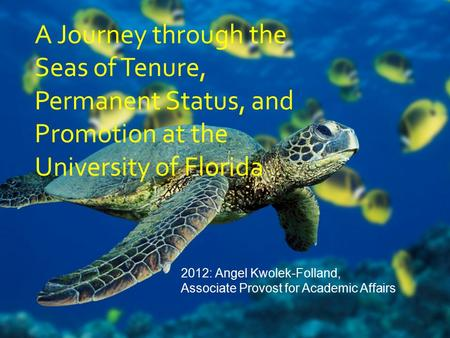 A Journey through the Seas of Tenure, Permanent Status, and Promotion at the University of Florida 2012: Angel Kwolek-Folland, Associate Provost for Academic.