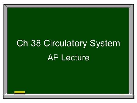 Ch 38 Circulatory System AP Lecture 4 chamber heart is double pump = separates oxygen-rich & oxygen- poor blood; maintains high pressure What's the adaptive.