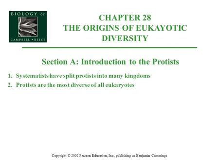 CHAPTER 28 THE ORIGINS OF EUKAYOTIC DIVERSITY Copyright © 2002 Pearson Education, Inc., publishing as Benjamin Cummings Section A: Introduction to the.