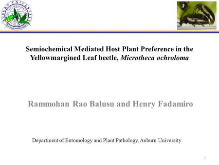 1 Semiochemical Mediated Host Plant Preference in the Yellowmargined Leaf beetle, Microtheca ochroloma Rammohan Rao Balusu and Henry Fadamiro Department.