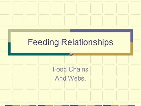 Feeding Relationships Food Chains And Webs.. FOOD CHAINS You need to be familiar with the idea of food chains. In its simplest sense, a food chain shows.