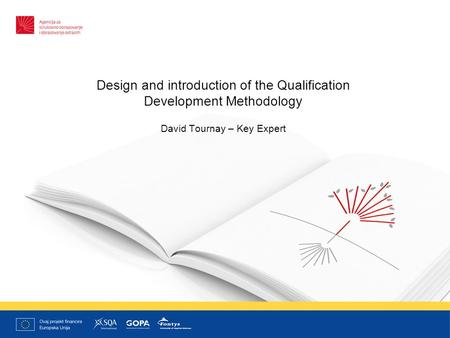 Design and introduction of the Qualification Development Methodology David Tournay – Key Expert.