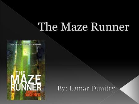 S o The novel The Maze Runner is set in the place that they call the Glade, a rather large courtyard within the Maze. o There are several structures.